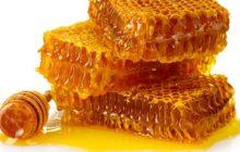توسط محققان ایرانی؛ تشخیص عسل طبیعی از صنعتی ممکن شد